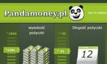 Pożyczka w Pandamoney – jakie warunki?