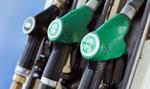 Delikatna podwyżka cen paliw