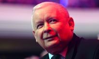 """Kaczyński: Przepisy dot. wycinki drzew będą zmienione. """"Widać w tym prawie lobbing"""""""