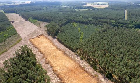 Fabryka Izery kosztem lasów? Sejm uchwalił specustawę