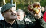 Sadownicy czekają na rekompensaty z Unii