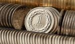 PLN w konsolidacji, możliwe spadki kursu eurodolara