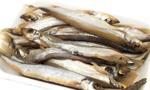 Kazachowie będą jednak jedli rybki z Polski