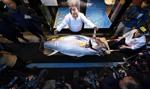 Na noworocznej aukcji w Tokio wylicytowano tuńczyka za blisko 2 mln dolarów