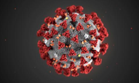 Eksperci: Brazylijski wariant koronawirusa może omijać system odpornościowy