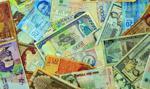 Słabość peso wsparła plantacje koki