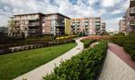 PZFD: w 2017 r. wzrost sprzedaży mieszkań przy niewielkim wzroście cen