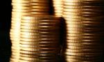 Skarb Państwa stracił co najmniej 344 tys. zł VAT-u za kolekcjonerskie monety