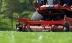 Susza w Polsce. Apel o niekoszenie trawników