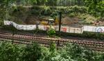 """""""Złoty pociąg"""": kolejne wiercenia przeniesione na środę"""