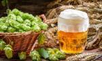 Słowenia: pierwsza w Europie piwna fontanna ma przyciągnąć turystów
