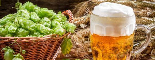 wzrasta akcyza? przerzuć się na piwo domowej produkcji