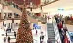 Policja: podczas świątecznych zakupów uważajmy na złodziei i oszustów