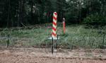 Holenderskie służby przestrzegają przed nielegalnymi uchodźcami z Białorusi
