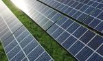 Columbus Energy ma umowę opcji zakupu projektów farm FV o potencjalnej mocy do 109,265 MW