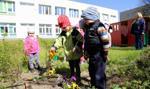 MEN przypomina: nauka w publicznych przedszkolach jest bezpłatna