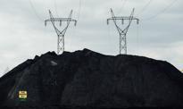 W energetyce absurd goni absurd
