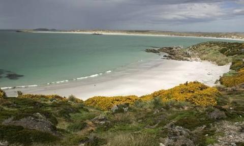 Proces o ropę z Wysp Falklandzkich