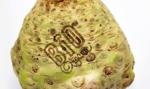 """Lidl na wojnie z plastikiem. Oznakuje warzywa """"świetlnymi tatuażami"""""""