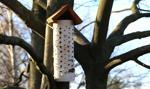 Biblio-budki, szybowce, domy dla owadów. Na to pójdą publiczne pieniądze