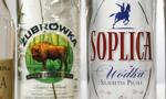 Znane marki z rosyjskim kapitałem