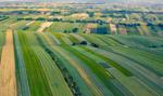 Coraz mniej gruntów rolnych do zagospodarowania