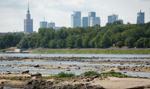 Ministerstwo: Do końca 2020 r. ma być gotowy plan przeciwdziałania skutkom suszy