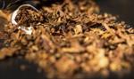 Łódzkie: zlikwidowano nielegalną fabrykę tytoniu