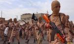 USA i inne potęgi gotowe dostarczyć rządowi Libii broń do walki z IS