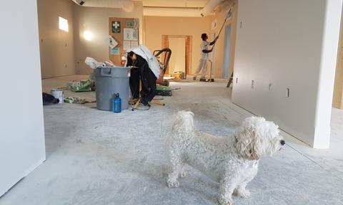 Państwo sfinansuje połowę remontu domu czy mieszkania. Nowy program dla rodzin na Węgrzech