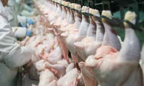 KOWR: Eksport żywności w okresie styczeń–październik 2020 r. wzrósł o 7 proc.