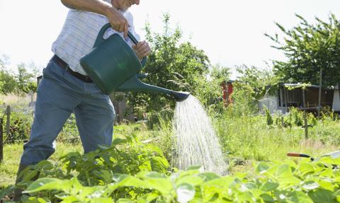 Działkowcy zapłacą za wodę 4 zł rocznie