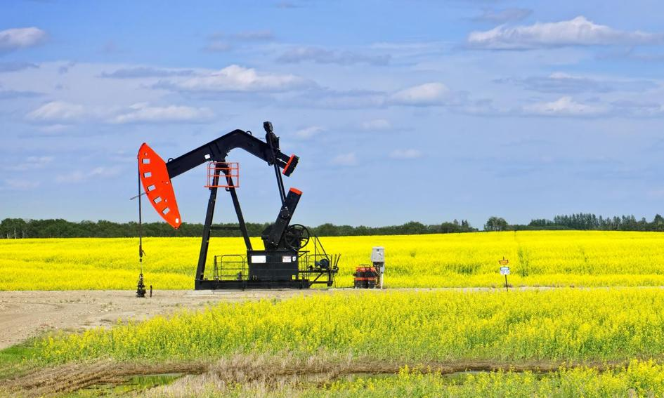 Ropa tanieje, bo OPEC nie wie, co zrobić z Irakiem i Iranem