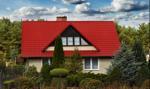 Ponad połowa Polaków mieszka w domach jednorodzinnych