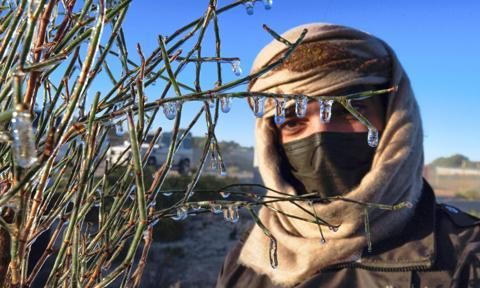 Emiraty: temperatury poniżej zera - szron i sople lodu na pustyni