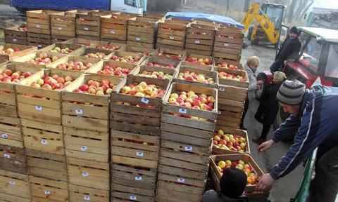 1,7 mln zł kary dla spółki Appol od UOKiK za opóźnione płatności dla sadowników