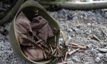 Od początku konfliktu w Donbasie zginęło ponad 2 600 żołnierzy