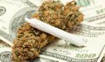 USA: jest praca przy marihuanie