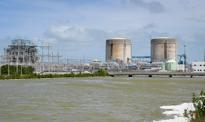 Raj dla krokodyli - kanały chłodnicze elektrowni atomowej na Florydzie