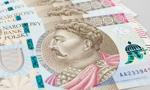Banknot 500 zł to wciąż biały kruk