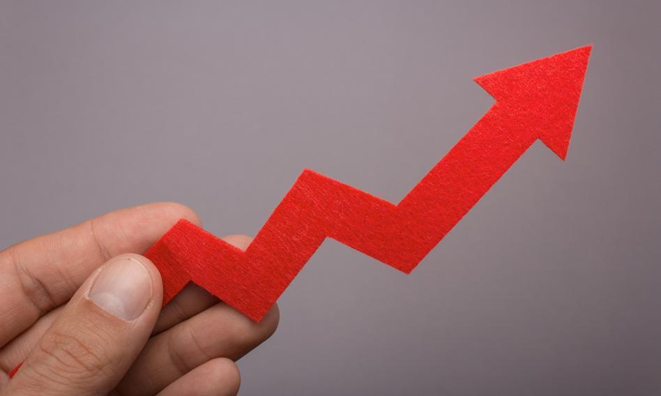 DM BOŚ: Dystrybutorzy IT mają jeszcze przestrzeń do wzrostów