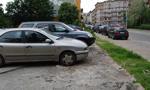 Warszawiacy przeciw parkowaniu na trawnikach