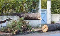 Ubezpieczyciele wypłacili więcej odszkodowań za szkody żywiołowe