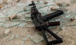 CBŚP: rozbito międzynarodowy gang, wśród zatrzymanych 12 Polaków