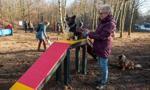 W Łodzi powstał psi park