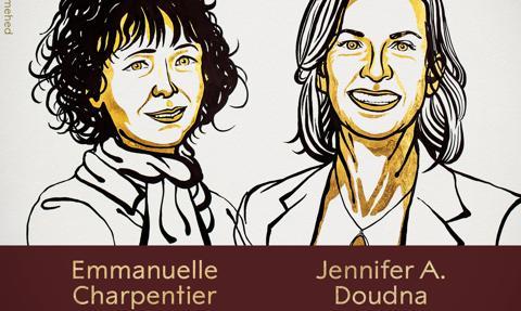 Nobel z chemii dla dwóch badaczek za edycję genomu
