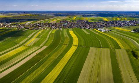 UOKiK: umowy na dostawy produktów rolnych muszą mieć określoną cenę