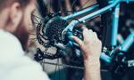 Rowerowy biznes stanął w korku