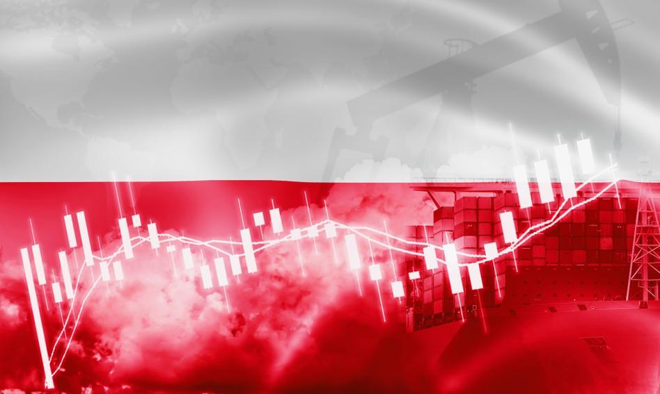Ekonomiści: Rok 2021 przyniesie odbudowę wzrostu gospodarczego w Polsce