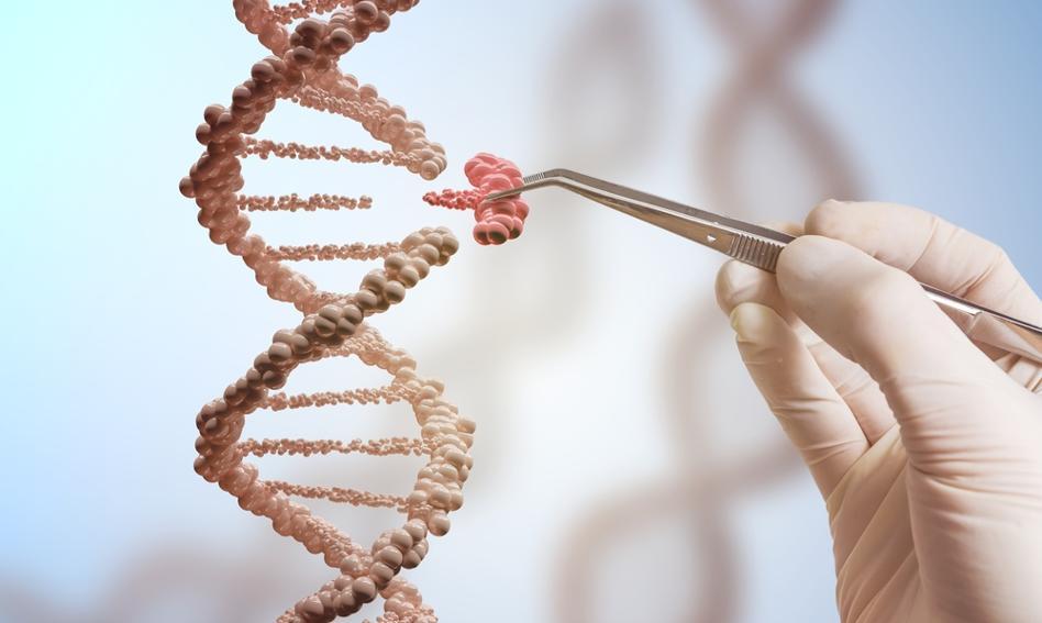 Czy gen zastąpi bit jako filar postępu?